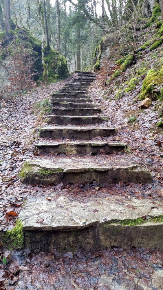Steps on a mountain path (Switzerland January 2016)