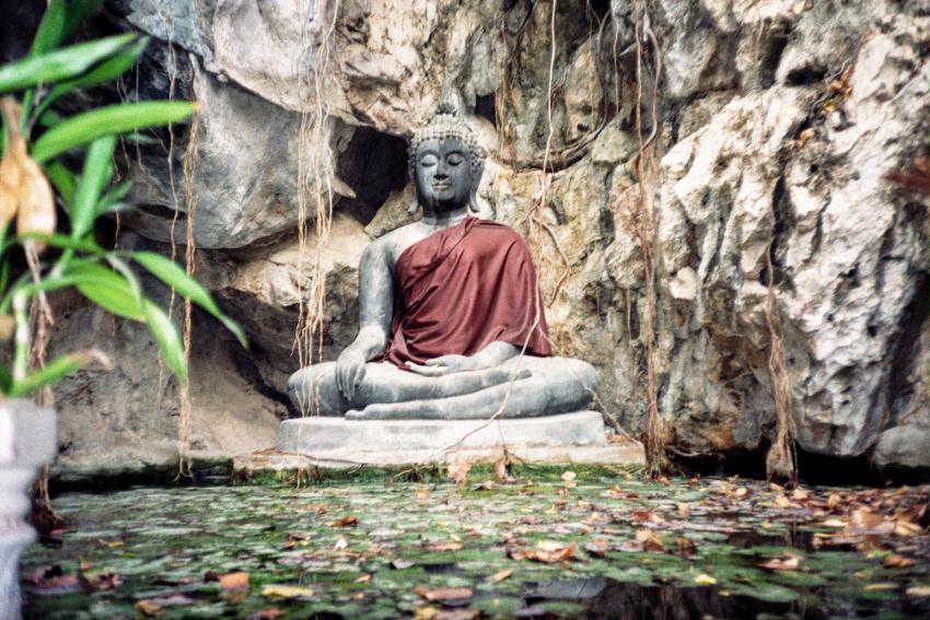 Buddha Statue sitting beside lilly pond