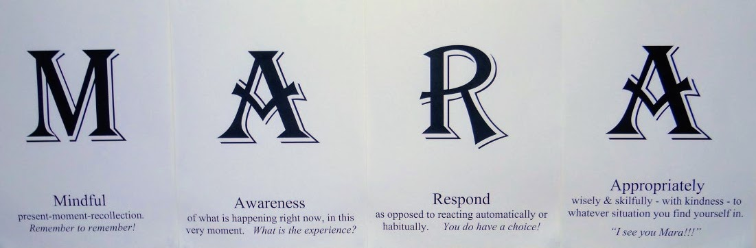 """Image – """"M.A.R.A. - Mindful Awareness Responds Appropriately"""" - Vince Cullen"""