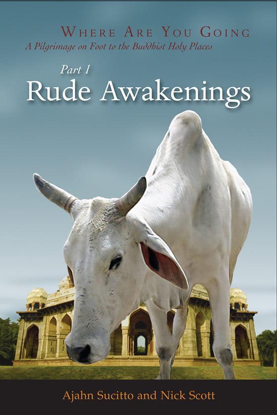 """Book cover of """"Rude Awakenings"""" by Ajahn Sucitto and Nick Scott"""