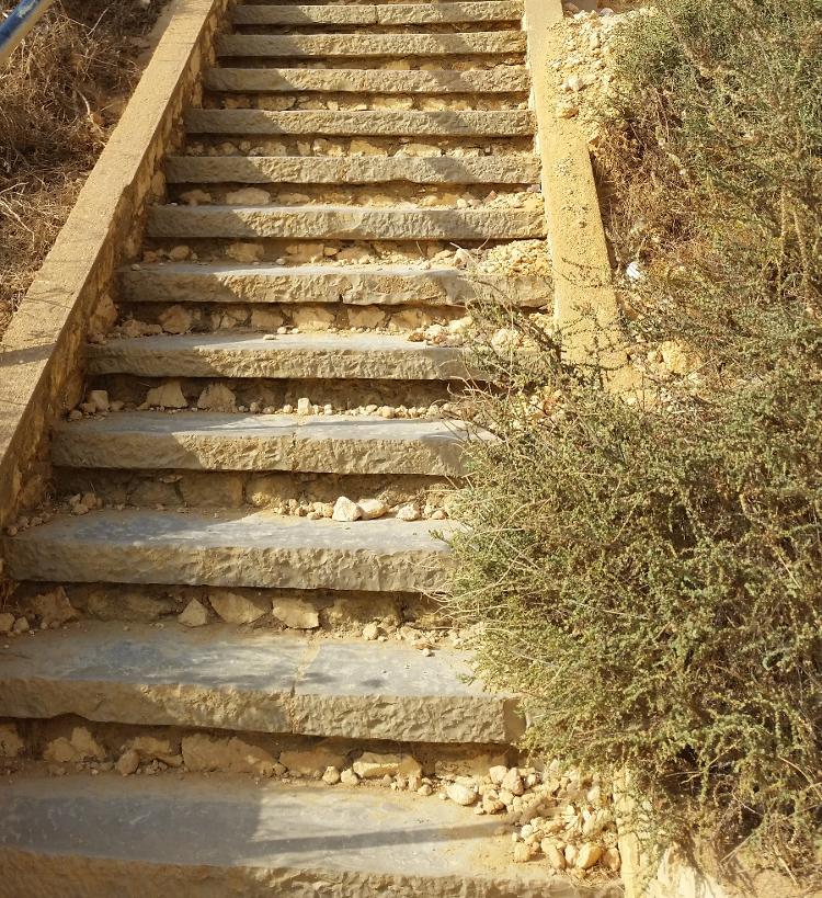 """Image – """"12 Steps at Ponta da Piedade"""""""
